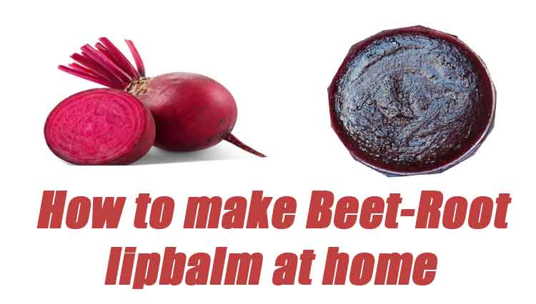 how to make bitroot lip balm at home
